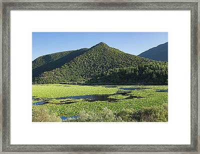 Kalodikiou, Or Kalodiki Lake, Greece Framed Print