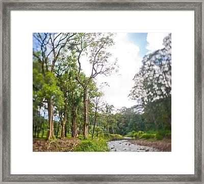Kauai Framed Print by Lannie Boesiger