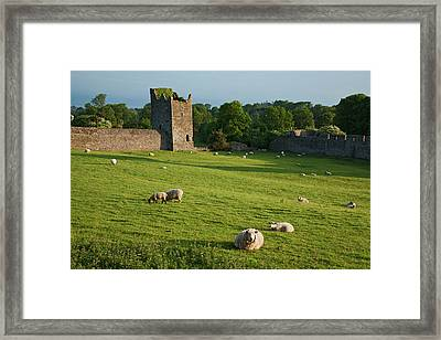 Kells Priory  Count Kilkenny, Ireland Framed Print by Carl Bruemmer