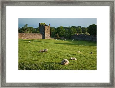Kells Priory  Count Kilkenny, Ireland Framed Print
