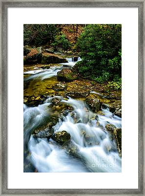 Kens Creek Cranberry Wilderness Framed Print by Thomas R Fletcher