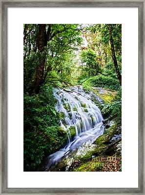 Kew Mae Pan Framed Print