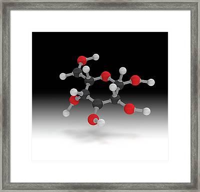L-glucose Molecule Framed Print by Mikkel Juul Jensen