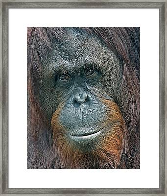 Lady Of The Forest 2 Framed Print by Larry Linton