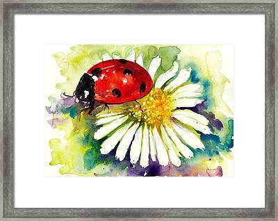 Ladybug In Flowers Framed Print by Tiberiu Soos