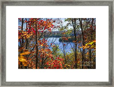 Lake And Fall Forest Framed Print