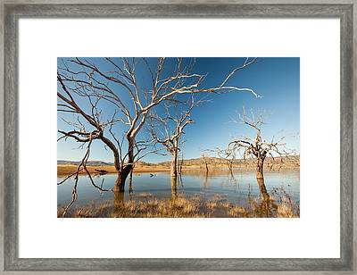 Lake Eildon In Drought Framed Print