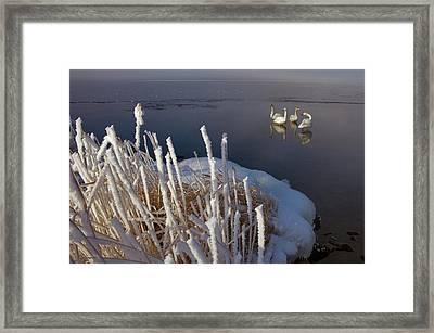 Lake Kussharo Framed Print by Lucas Vallecillos- Vwpics