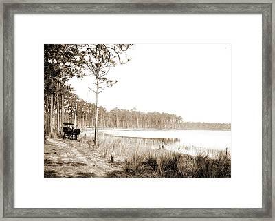 Lake Louise Near Seville, Fla, Jackson, William Henry Framed Print