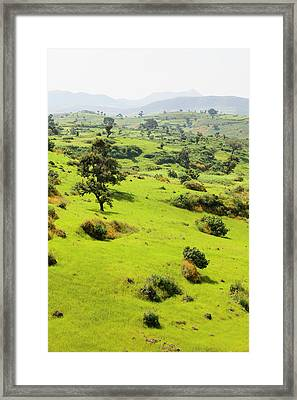 Landscape Between Gonder And Lake Tana Framed Print by Martin Zwick