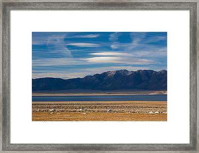 Landscape By A Lake Crowley With White Framed Print by Panoramic Images