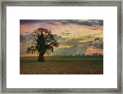 L'arbre Framed Print