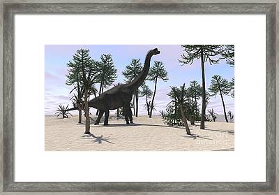 Large Brachiosaurus In A Tropical Framed Print by Kostyantyn Ivanyshen