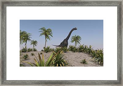 Large Brachiosaurus Roaming Framed Print by Kostyantyn Ivanyshen