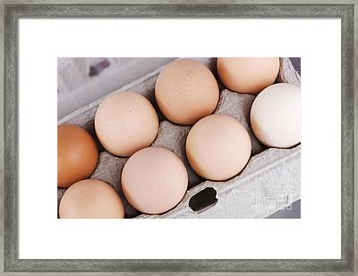 Large Carton Eggs Framed Print by Jorgo Photography - Wall Art Gallery