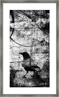 Last Call  Framed Print by Jerry Cordeiro