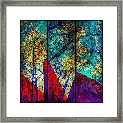 Framed Print featuring the photograph Last Leaves Of Fall by Paul Cutright