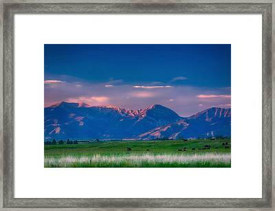 Last Light Framed Print by Joan Herwig