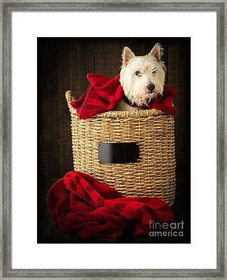 Laundry Day Framed Print by Edward Fielding