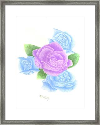 Lavender Blue Quartet Framed Print by Dusty Reed
