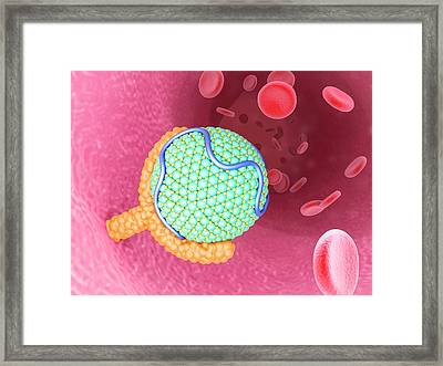 Ldl Bound To Receptor Framed Print