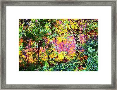 Leafy II Framed Print