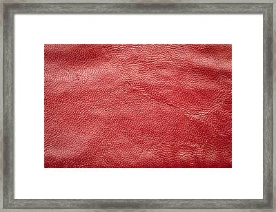 Leather Framed Print by Tom Gowanlock