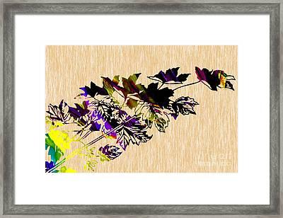 Leaves Art Framed Print by Marvin Blaine