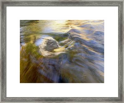 Leibert 14 Framed Print
