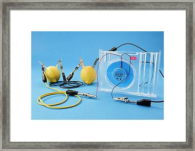 Lemon Clock Framed Print by Trevor Clifford Photography