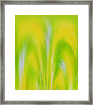 Lemon Lime Framed Print by Patricia Kay