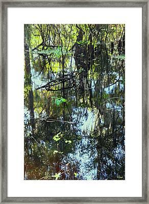 Lettuce Lake Abstract Framed Print