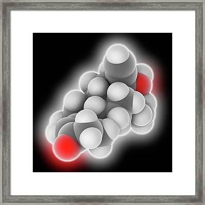 Levonorgestrel Drug Molecule Framed Print