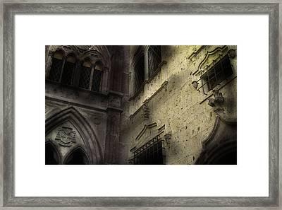 Libra Framed Print by David Fox