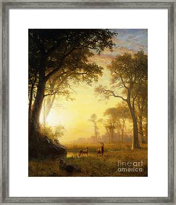 Light In The Forest Framed Print by Albert Bierstadt