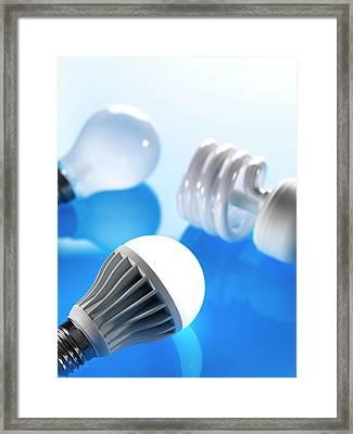 Lightbulbs Framed Print