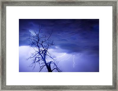 Lightning Tree Silhouette 29 Framed Print