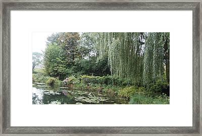 Lilly Pond  Framed Print by Kristine Bogdanovich