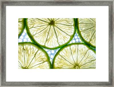 Lime. Framed Print by Slavica Koceva