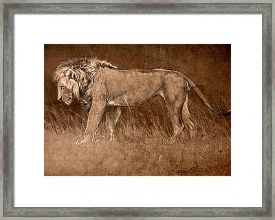 Framed Print featuring the digital art Lion Sketch by Aaron Blaise