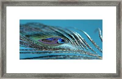 Liquid Blue Framed Print