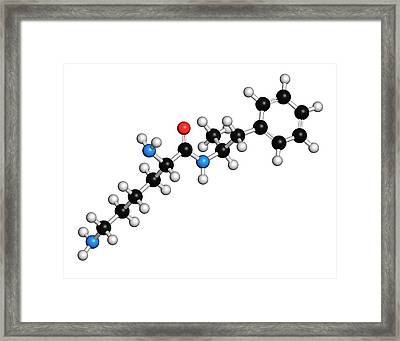 Lisdexamfetamine Mesylate Adhd Drug Framed Print by Molekuul