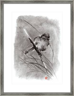 Little Bird On Branch  Framed Print by Mariusz Szmerdt