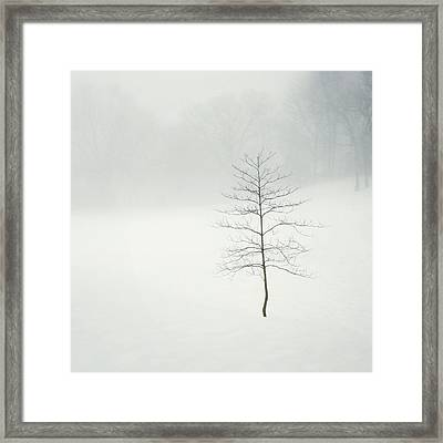 Little. Lost. Lonely. Framed Print by Natasha Marco