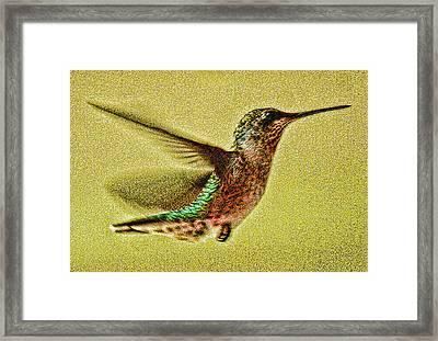 Little Wings Framed Print by Joe Bledsoe