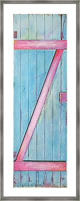 Little Z Door Revisited Framed Print by Asha Carolyn Young
