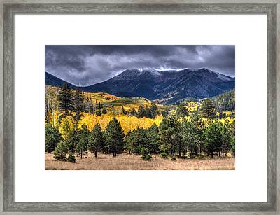 Lockett Meadow Framed Print