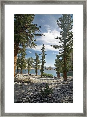 Lone Pine Lake Shoreline Framed Print by Jim West