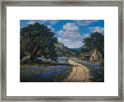 Lone Star Vision Framed Print by Kyle Wood