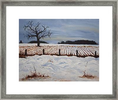 Lone Tree In Winter Framed Print by Monica Veraguth